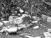 picture of conquistadors  - Mayan ruins of Chichen Itza in Yucatan Mexico Kukulcan snake head  - JPG