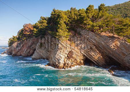 Coastal Rocks With Pine Trees. Adriatic Sea, Montenegro