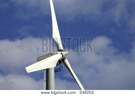 Windmill Wings