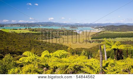 Waitangi, Bay Of Islands, Paihia, Northland, New Zealand