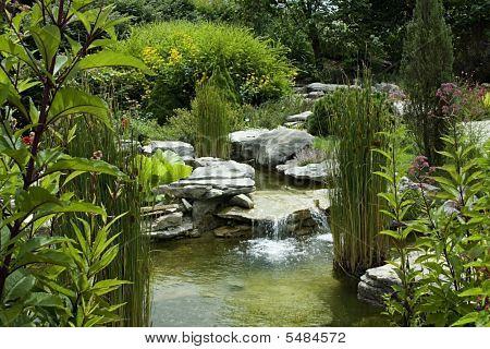 Water Garden Horizontal