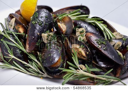 Plate Of Freshly Cooked Mussels