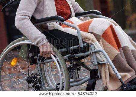 Disabled Elderly