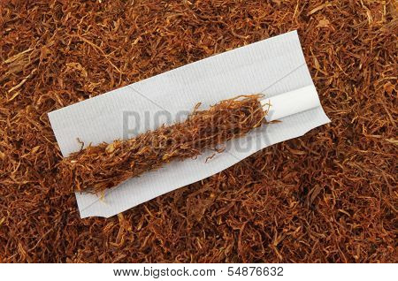Rolling Tobacco