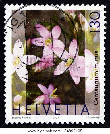 Postage Stamp Switzerland 2003 European Centaury, Medicinal Plant