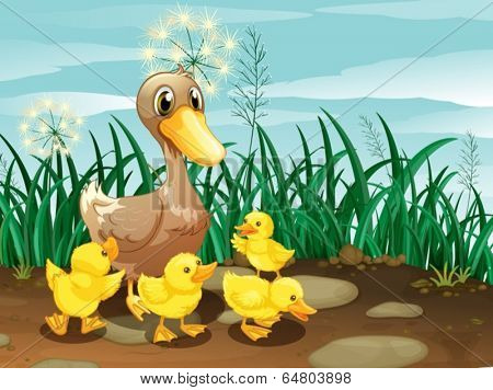 Illustration of a duck and her ducklings near the grassland