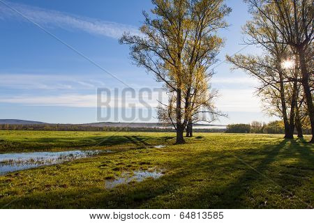 Sunny Landscape Of Ural Meadow