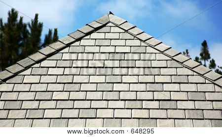 Siding And Roof Line
