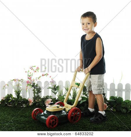 An adorable preschooler standing on grass with his toy lawnmower.  The grass is edged by a short fence and foliage, on a white background.