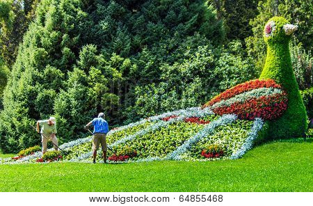 Gardeners working at the flower bird on Flower Island Mainau, a unique Island of Flower, Lake Consta