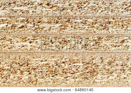 Particle Board Cross Section Texture