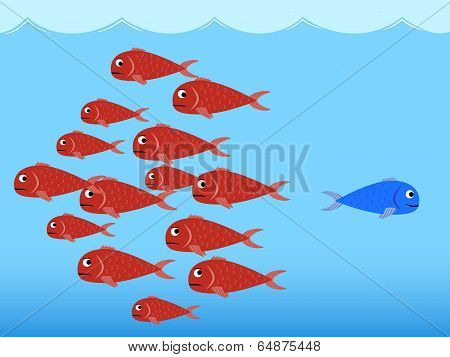 Red and blue fishes