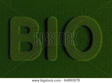 Grass BIO