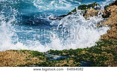 surf on the coral reefs in the sunny day