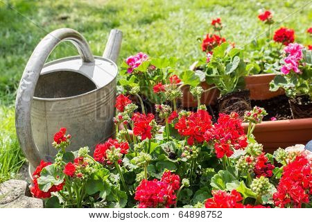 Flower Pot With Watering Can