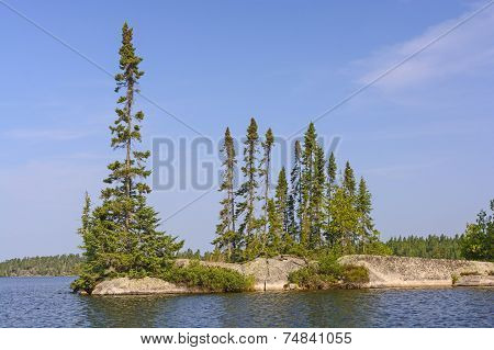 Isolated Pines On A Rocky Island