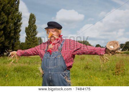 Scarecrow Alive