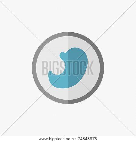 Stomach Flat Icon