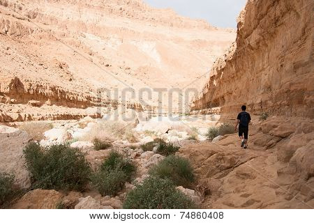 Hiking In Stone Desert Middle East Adventure
