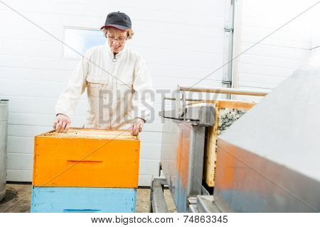 Senior female beekeeper with honeycomb crates working in beekeeping factory