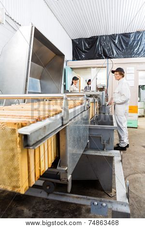 Male and female beekeepers working on honey extraction plant in beekeeping factory
