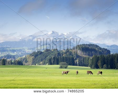 Mountains In Bavaria