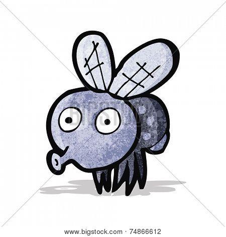cartoon funny fly