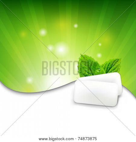 Green Wall With Mint Gum With Gradient Mesh, Vector Illustration