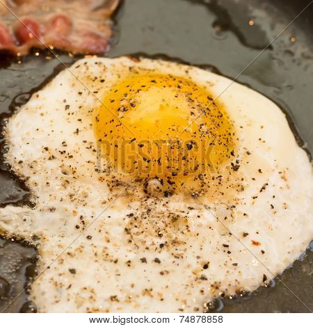 A greasy breakfast of fried bacon and an egg frying in a frying pan.