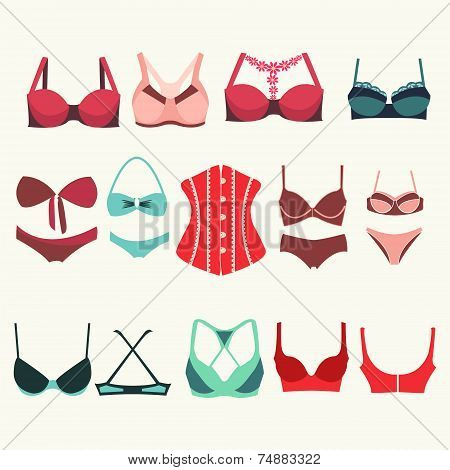 Different Types Of Bras - Illustration