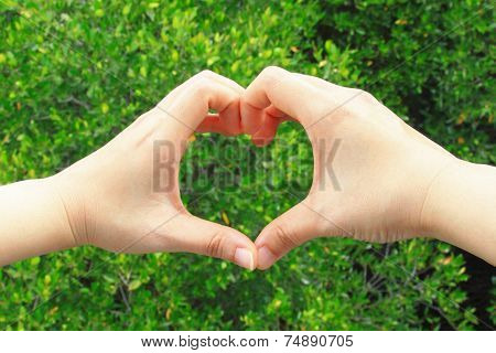 Hand making a heart shape on green