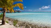 pic of french polynesia  - Beautiful beach on Bora Bora island in French Polynesia - JPG