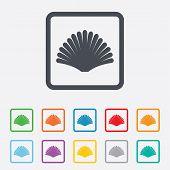 foto of conch  - Sea shell sign icon - JPG