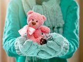 foto of cute bears  - Female hands holding a cute teddy bear - JPG