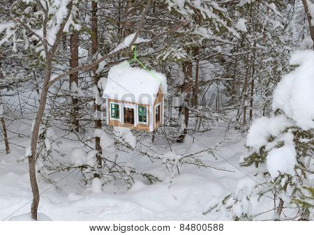 Bird feeders in the form of the house in the winter forest