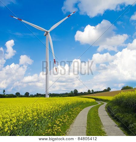 wind turbine and canola fields