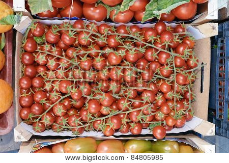 sicilian box bunches cherry tomatoes