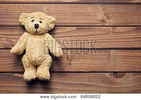 the teddy bear on wooden table