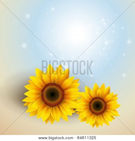 Flower Background with sunflower, vector illustration.