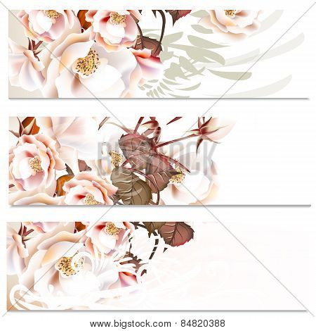 Floral Backgrounds Set With Roses For Wedding Design