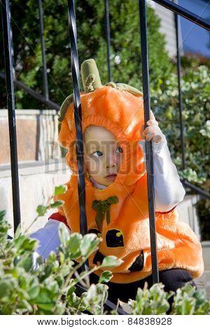 Baby boy in a pumpkin halloween costume