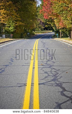 An empty road with diminishing perspective during the fall season