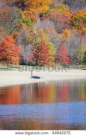 Small boat on beach with beautiful fall trees