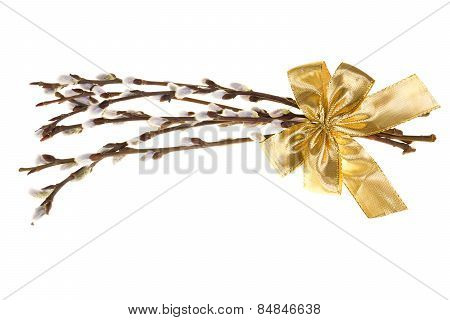 Easter Palm Catkins With Golden Ribbon Isolated On White Background