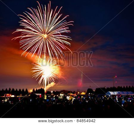 Fireworks exploding over a crowd at night