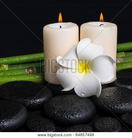 Spa Concept Of Zen Basalt Stones, White Flower Frangipani, Candles And Natural Bamboo With Drops, Cl