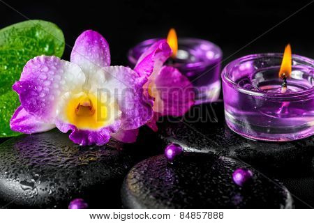 Spa Concept Of Orchid Flower, Zen Basalt Stones With Drops, Lilac Candles, Beads, Closeup