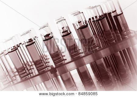 Test-tubes with fluid, close-up