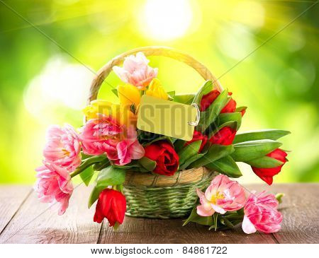Basket of Spring holiday flowers with greeting card. Beautiful bouquet of colorful tulips over nature blurred green summer background with a sun. Mother's Day or Easter design. Springtime