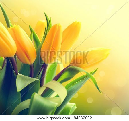 Spring Flowers bunch. Beautiful yellow Tulips bouquet. Elegant Easter or Mother's Day gift over nature green blurred background. Springtime.